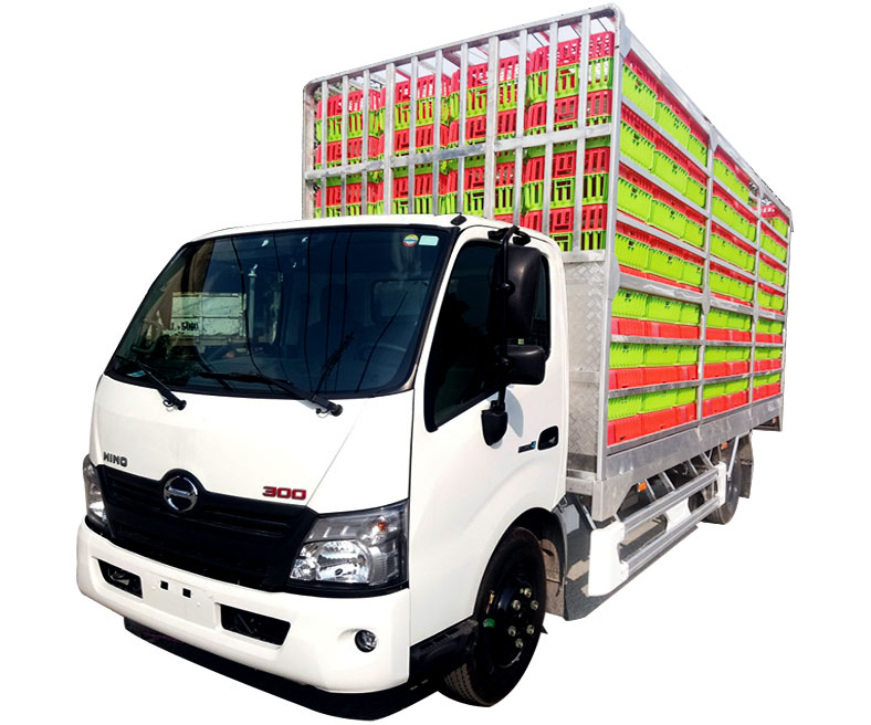Xe tải chở gia cầm HINO 300 5 tấn