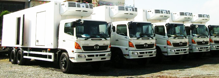 Bãi xe tải đông lạnh Hino